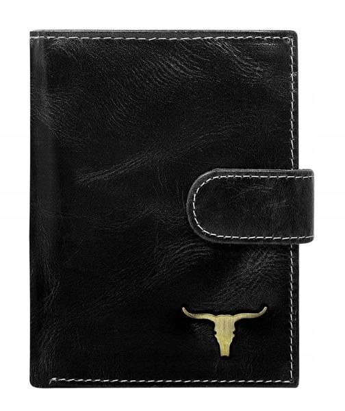 Pánská kožená peněženka Irvin, černá
