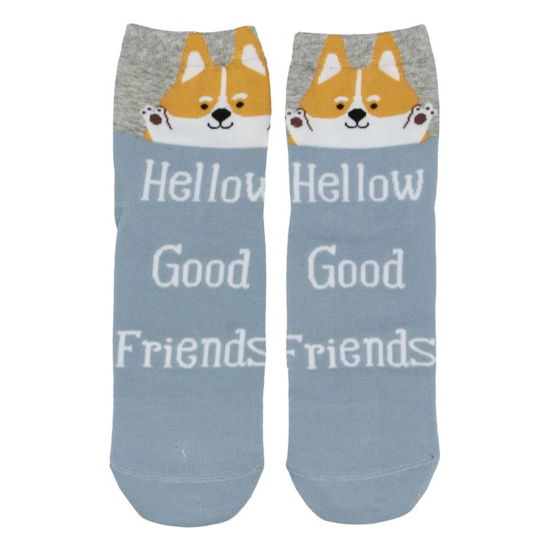 Dámské ponožky Hellow good friends Lyška 38-41, modré