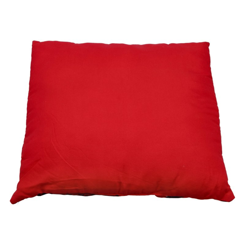 Dětský polštářek Beruška a Černý kocour, červený