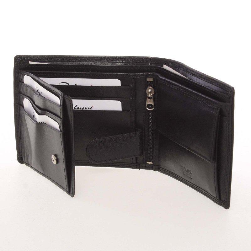 Pánská kožená peněženka Dion, černá